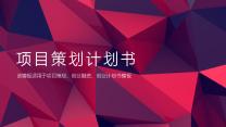简约时尚商业项目策划书模板.pptx