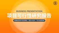 简约橙色项目可行性报告商务汇报模板.pptx