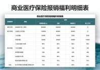 商业医疗保险报销福利明细表.xlsx