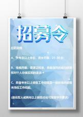 企业商务风简约招募招聘宣传单.docx