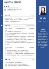 经典商务蓝外贸业务员求职简历.docx