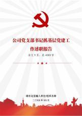 党支部书记抓基层党建工作述职报告.docx