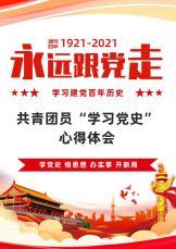 """共青团员""""学习党史""""心得体会.docx"""